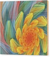 Floral Expressions 1 Wood Print