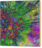 Floral Expressions II Wood Print