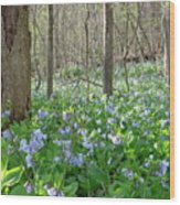 Floral Forest Floor Wood Print
