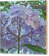 Floral Landscape Blue Hydrangea Flowers Baslee Troutman Wood Print