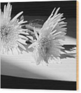 Floral No3 Wood Print