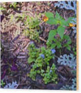 Floral Print 003 Wood Print