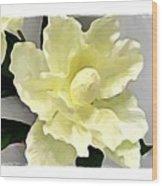 Floral Series I Wood Print