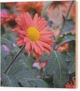 Floral Smiles Wood Print