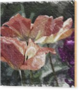 Floral Spring Tulips 2017 Pa 02 Wood Print