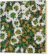 Floral Texture In The Summer Wood Print