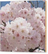Floral Tree Blossoms Flowers Pink Art Baslee Troutman Wood Print