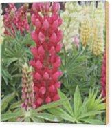 Floral2 Wood Print