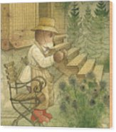 Florentius The Gardener20 Wood Print