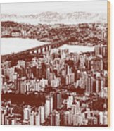 Florianopolis Downtown Wood Print