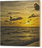 Florida Beach Wood Print
