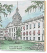 Florida Capitol 1902 Wood Print by Audrey Peaty