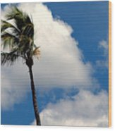 Florida Clouds Wood Print
