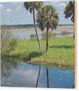 Florida Essence - The Myakka River Wood Print
