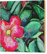 Florida Flower Wood Print