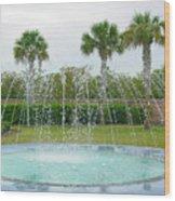 Florida Fountain Wood Print