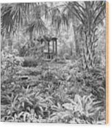 Florida Garden Scene_009 Wood Print
