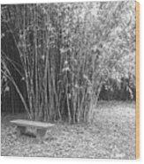 Florida Garden Scene_010 Wood Print