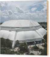 Florida Gators Stephen C. O'connell Center Wood Print by Replay Photos