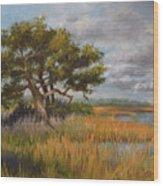 Florida Intercoastal Wood Print