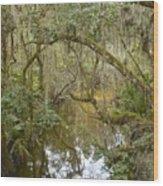 Florida Jungle Wood Print