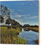 Florida Lands 7 Wood Print