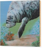 Florida Manatee Wood Print