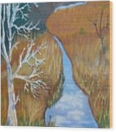 Florida Marshland Wood Print