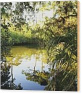 Florida Of Olde Wood Print