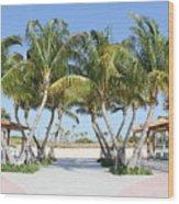 Florida Palms At Beach Wood Print