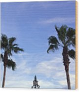Florida Queen Palm   Wood Print