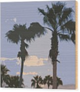 Florida Queen Palm Trees   Wood Print