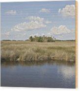 Florida Salt Marsh Wood Print