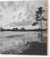 Florida Scene Wood Print by Steven Scott