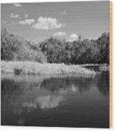 Florida Shoreline Wood Print