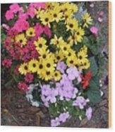 Florida Spring Flowers Wood Print