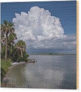 Florida Mountains Wood Print
