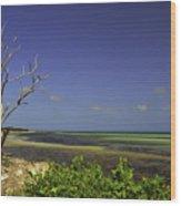 Florida Tree Wood Print