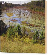 Florida Wetland Wood Print