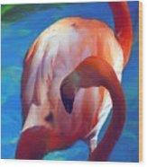 Florida's Flamingo's Wood Print