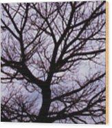 Floss Silk Tree Wood Print