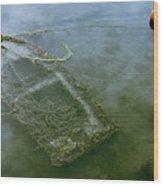 Flota Hundida Wood Print