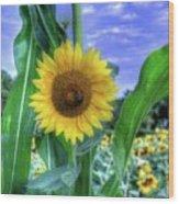 Flower # 38 Wood Print