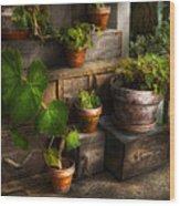 Flower - Plant - A Summers Soak  Wood Print by Mike Savad