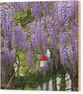 Flower - Wisteria - A House Of My Own Wood Print by Mike Savad