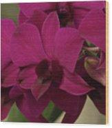 Flower 127 Wood Print