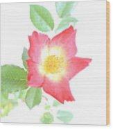 Flower 17 Wood Print