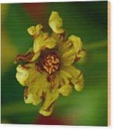 Flower 3 Wood Print