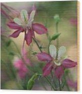 Flower 3506_2 Wood Print
