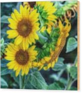 Flower #39 Wood Print